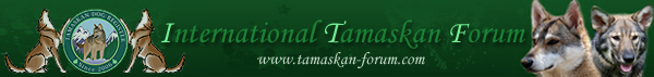International Tamaskan Forum image banner
